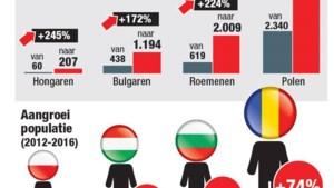 """Oost-Europeanen met ziekte-uitkering fors gestegen: """"Verblijven die allemaal in België?"""""""