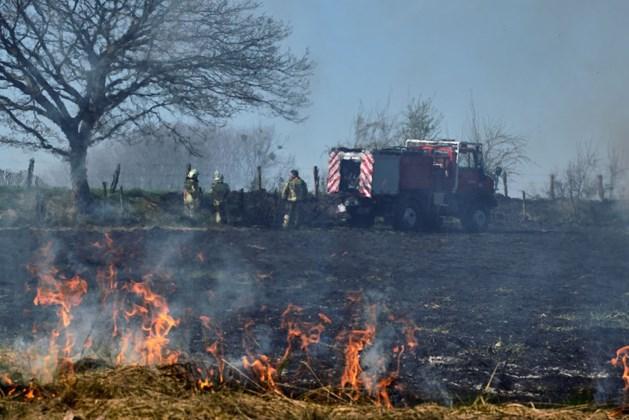 Code rood voor brandgevaar in Limburg: hier moet je extra voorzichtig zijn