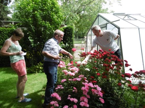 Tuinhier Bilzen geeft tuinadvies aan huis