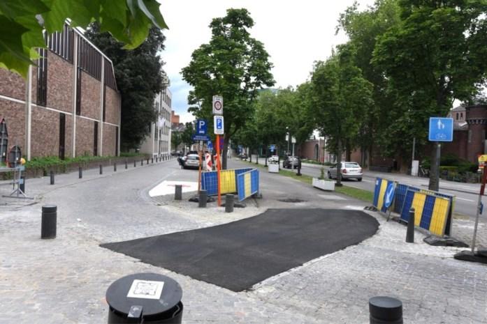 Hasseltse 'Groene Boulevard' krijgt okergele kleur