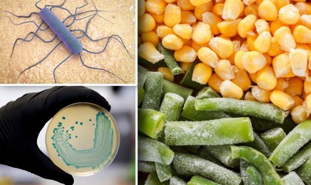 Listeria-uitbraak ook in ons land: bacterie gevonden in Belgische diepvriesgroenten