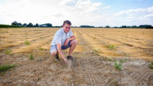 """Fantastische zomer voor archeologen: """"Aanhoudende droogte maakt 2.000 jaar oude sporen zichtbaar"""""""