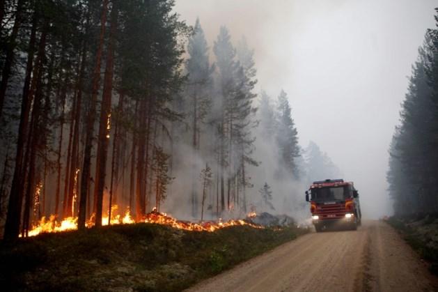 Bosbranden in Zweden raken maar niet geblust
