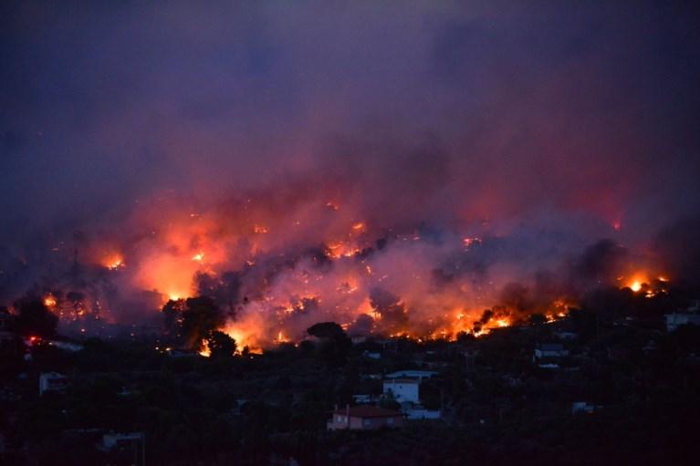 Al minstens vijftig doden door bosbranden nabij Athene, Vlaamse toeristen wachten bang op evacuatie