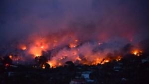 OPROEP. Bent u in de buurt van de bosbranden in Griekenland?