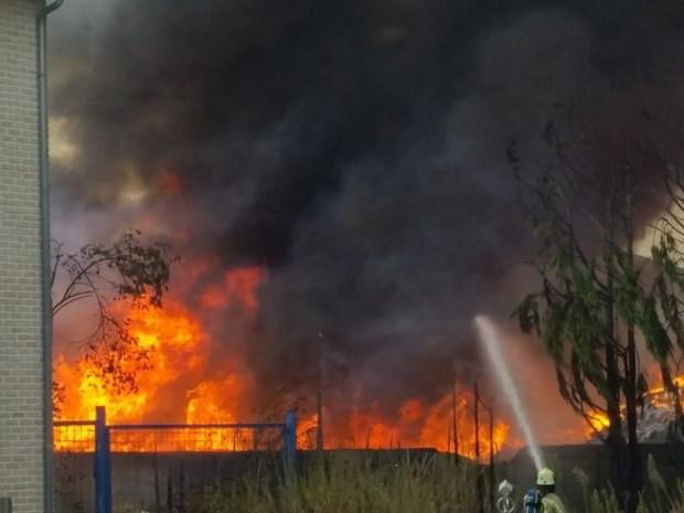 VIDEO. Brand bij recyclagebedrijf in Helchteren: vuur onder controle
