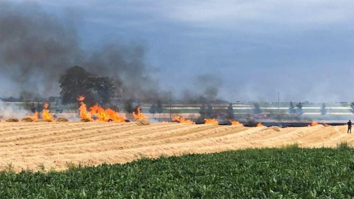 Pyromaan nog altijd actief in Lommelse grensregio