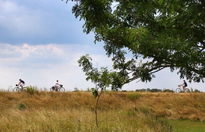 Wielerliefde: wanneer fietsfans liever op hun zadel dan in hun zetel zitten