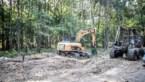 Eerste bomen tegen de vlakte voor vakantiedomein Terhills: