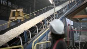 Droogte: Tiense Suikerraffinaderij en Olympia stellen water ter beschikking