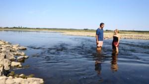 """Vlaanderen kampt met """"zeer lage"""" grondwaterstanden"""