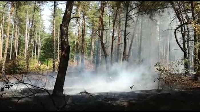 Brandweer rukt uit voor hevige bosbrand in Lommel
