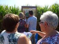 Laatste bezoekers van het maïsdoolhof vinden de uitgang