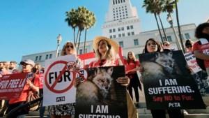 Los Angeles legt bont aan banden