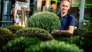 """Lummense tuinbouwer aan de dood ontsnapt na besmetting met TBE-virus: """"Eén tekenbeet, en ik kon niet meer praten of lopen"""""""