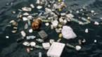 Europees verbod komt geen moment te vroeg: plastic zit al in onze stoelgang