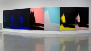 Raf Simons opent expo met exclusieve kunstwerken van Andy Warhol bij Calvin Klein