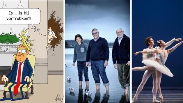 Cartoons, zeilen met een burgemeester en een bom op de Koolmijnlaan. Dit zijn de strafste video's van de week
