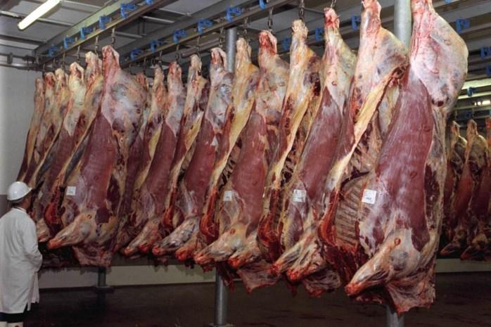Slachthuis Genk krijgt 24.000 euro boete voor vuile messen en vieze varkensfrigo