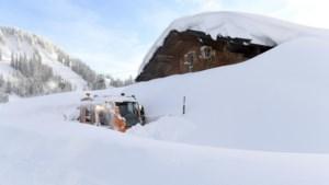 Vijf doden door lawines in de Alpen: ook vandaag nog zware sneeuwval verwacht