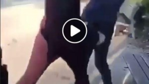 Leuvense politie opent onderzoek na filmpje van vechtpartij in park