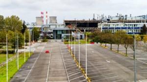 Ontwrichte zone Limburg al goed voor 4.061 nieuwe jobs: Patrick Dewael pleit voor verlenging steunmaatregel