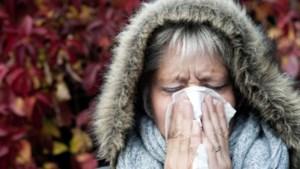 FACT CHECK. Helpt een ui op het nachtkastje echt tegen verkoudheid?