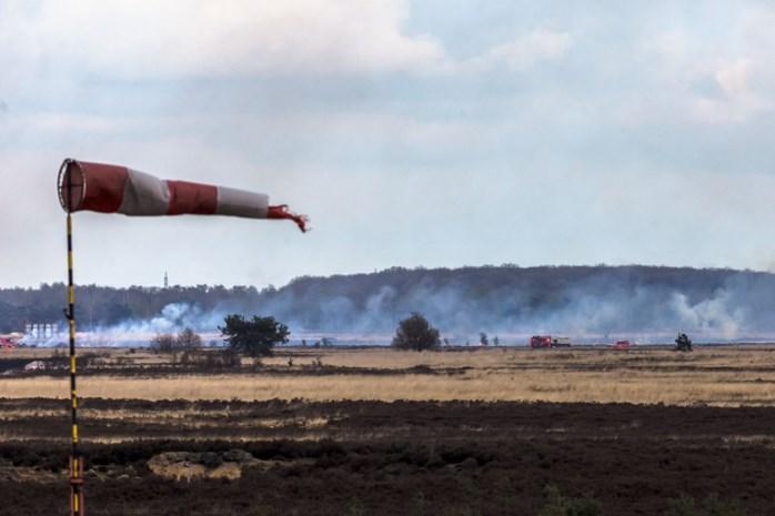 Vijftig hectare heide verwoest  na brand op Pampa in Helchteren