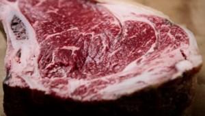 FACTCHECK: Is kweekvlees nu echt beter dan gewoon vlees?