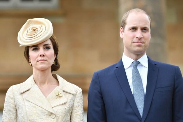 Bedrijf schoonouders prins William in slechte papieren