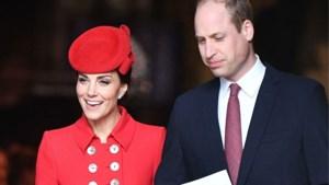 Waarom prins William misschien niet meteen op babybezoek zal gaan bij zijn broer