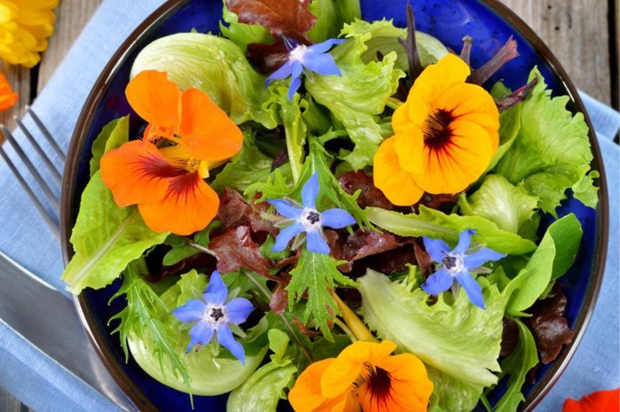 Mooi in de tuin, lekker op uw bord: bloemen om op te eten