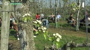 Limburgs toerisme neemt vliegende start, maar gedeputeerde wil nog meer