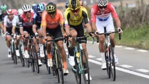"""Wout van Aert en Greg Van Avermaet vol lof voor winnaar Bettiol: """"Het was echt een heel zware wedstrijd"""""""