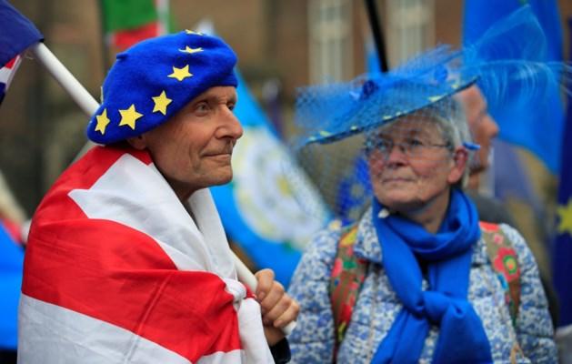 Britse regering maakt zich, ondanks de Brexit, klaar voor Europese verkiezingen