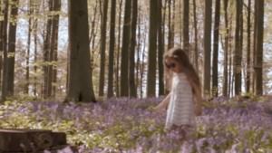 Regi verontschuldigt zich voor videoclip in Hallerbos