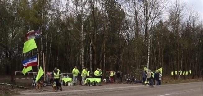 Tachtig gele hesjes betogen tegen kap Kauliller bossen