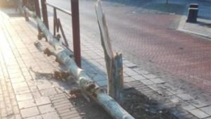Burgemeester Terwingen dreigt met sluiting shishabar na vechtpartij die eindigt in het ziekenhuis