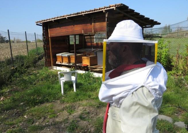 Imker stopt na aanval door een zwerm agressieve honingbijen