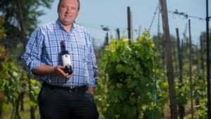 Belgische wijnboeren produceren recordhoeveelheid wijn