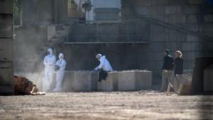 Conciërge dood teruggevonden in waterreservoir afbraakbedrijf
