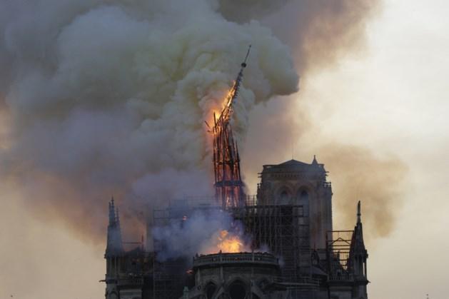 Tienduizenden bijen overleven vuurzee in Notre-Dame