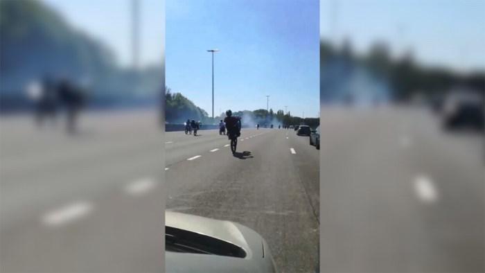 Stuntende motards op Antwerpse ring: politie schrijft 44 boetes uit en trekt zeven rijbewijzen in
