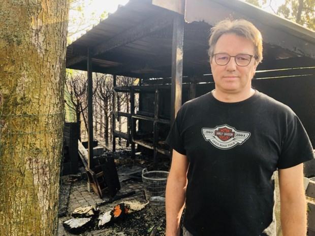 Gasbrander zet berghok in brand in Heusden-Zolder