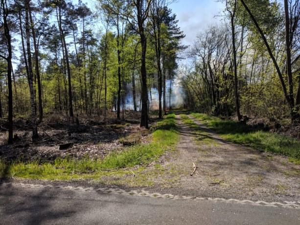 Dilsenaar van 58 opgepakt voor brandstichtingen