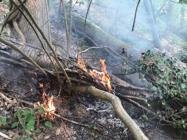 Tien brandjes in Bilzers recreatiebos