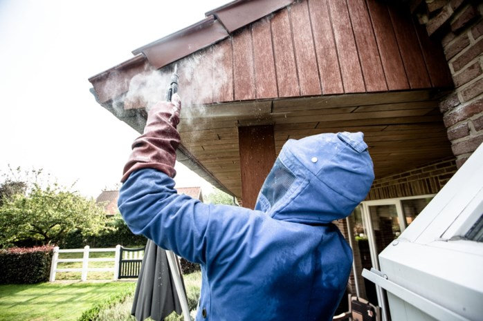 Eind april en brandweer heeft handen al vol met wespennesten