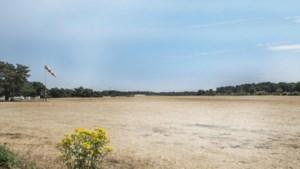 """Natuur kreunt onder droogte, grondwaterstand blijft """"zeer laag"""""""
