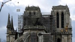 Dit zijn de meest interessante ontwerpen voor de heropbouw van de Notre-Dame