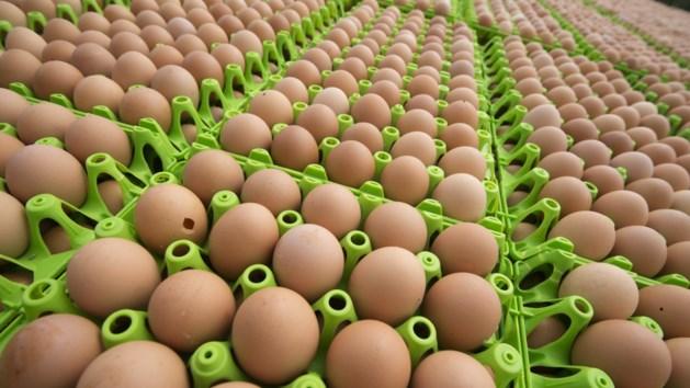Colruyt en OKay roepen eieren met teveel PCB's terug